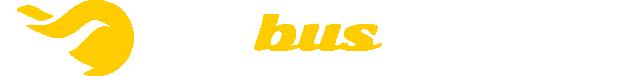 m-bus.com.pl – wynajem busów